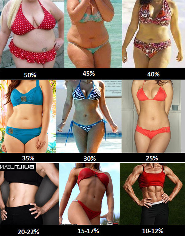 body fat percentage women abs and bossom