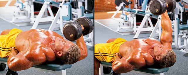 one arm bench